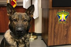 Meet Tito, the Newest Member of the Police Department